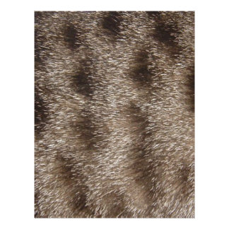 CAT FUR LETTERHEAD
