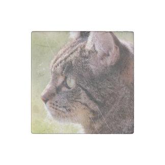 cat stone magnet