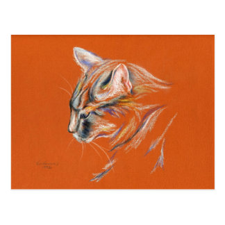 Cat, Gray in Profile - Pastel Drawing Postcard