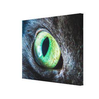 Cat Green Eye Close-Up Canvas Print