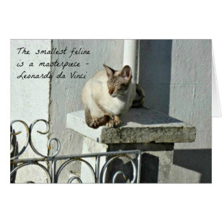 Cat Greeting Card with Quote