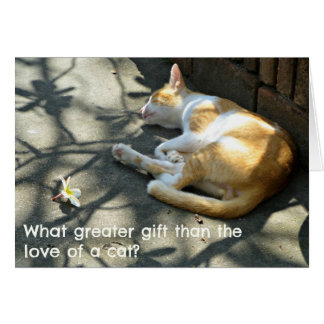 Cat Greetings Card - What Greater Gift?