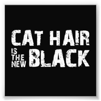 Cat Hair is the New Black Art Photo