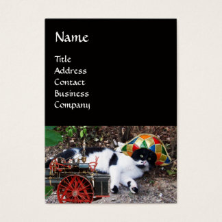 CAT , HARLEQUIN HAT AND VINTAGE STEAM LOCOMOTIVE BUSINESS CARD