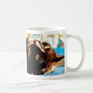 cat head in sunlight neat animal feline image coffee mug