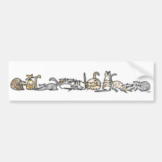 Cat Herd Bumper Sticker