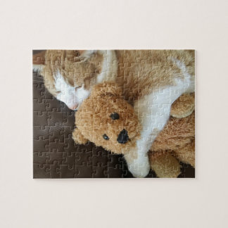 Cat holds old teddy bear jigsaw puzzle