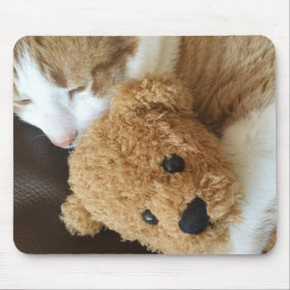 Cat holds old teddy bear mouse pad