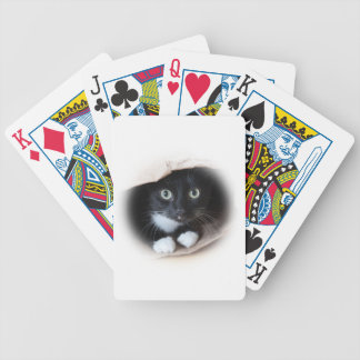 Cat in a bag bicycle playing cards