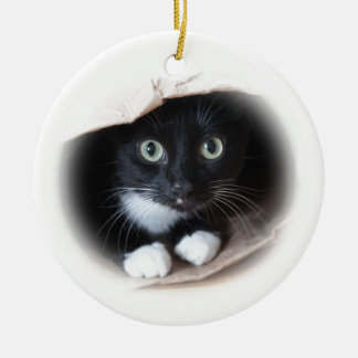 Cat in a bag ceramic ornament