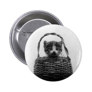 Cat in a Basket Vintage Photo 2 Inch Round Button