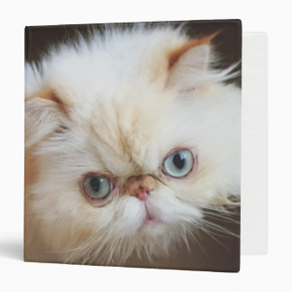 Cat In A Box Vinyl Binder