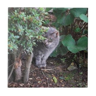 cat in a garden tile