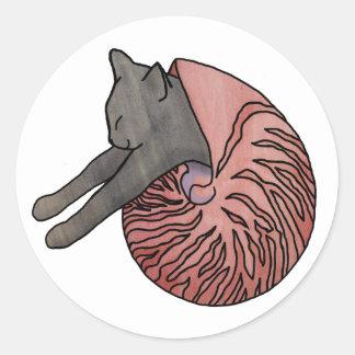 Cat in a shell sticker - Nautilus