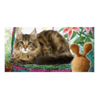 Cat in Basket Photo Greeting Card