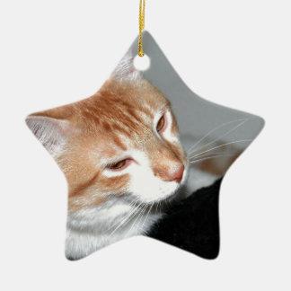 Cat in bed ceramic star ornament