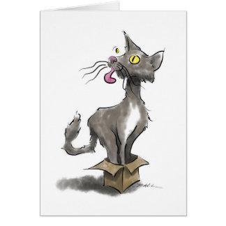 Cat in Box Card
