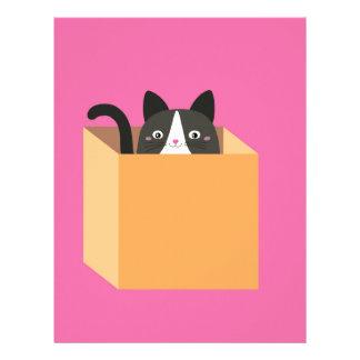 Cat in  box letterhead
