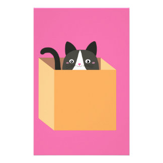 Cat in  box stationery