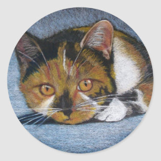 CAT IN COLOR PENCIL: STICKERS