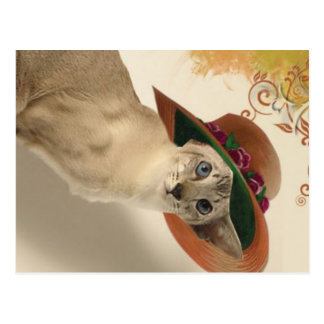 Cat in fashion Vintage Hat by CharmingVinatge Postcard