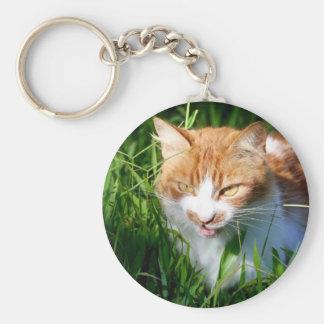 Cat in grass basic round button keychain