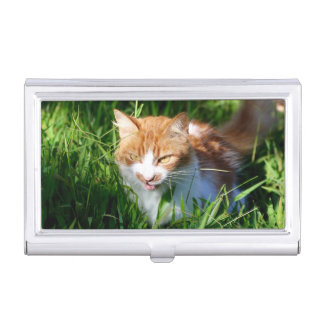 Cat in grass business card holder