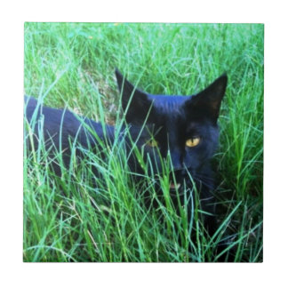 Cat in Grass Tile
