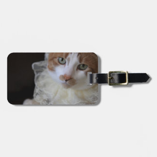 Cat in lacy collar luggage tag