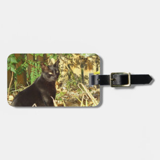 Cat in Morning Personalized Luggage Tag