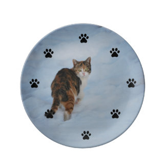 Cat in Snow Plate