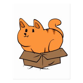 Cat in the box postcard