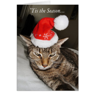 Cat in the Santa Hat Funny Card