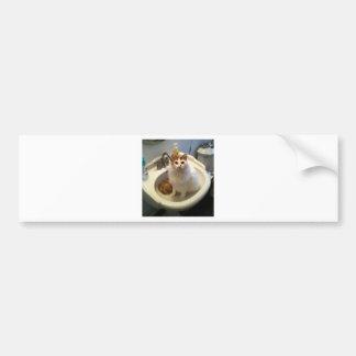 Cat in the Sink Bumper Sticker