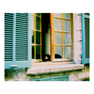 Cat in the Window/JSKFR003 Poster