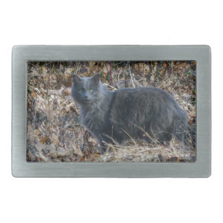 Cat in the Woods Belt Buckle