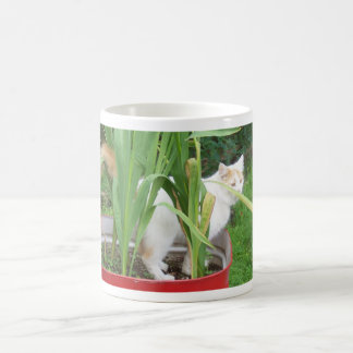 """CAT IN TUB OF FLOWERS"" COFFE MUG"