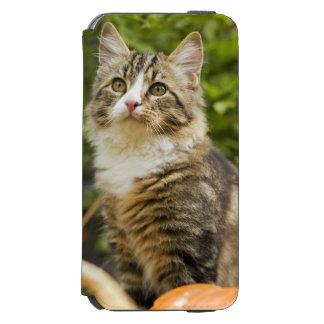 Cat Incipio Watson™ iPhone 6 Wallet Case