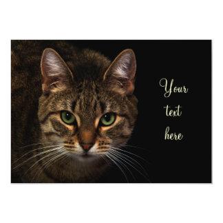 "Cat 5"" X 7"" Invitation Card"