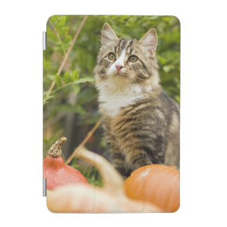 Cat iPad Mini Cover