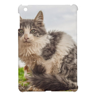 cat iPad mini cover
