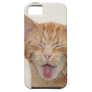 cat iPhone 5 cases