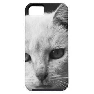 cat iPhone 5 cover