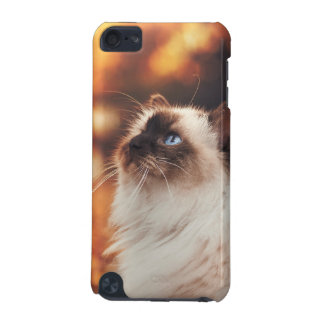 Cat iPod Touch 5G Case
