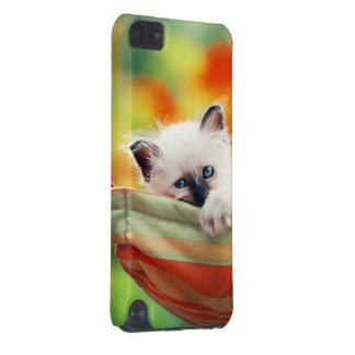 Cat iPod Touch (5th Generation) Case