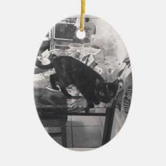 Cat is caught guilty ceramic ornament