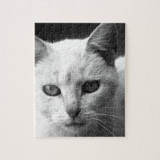cat jigsaw puzzle
