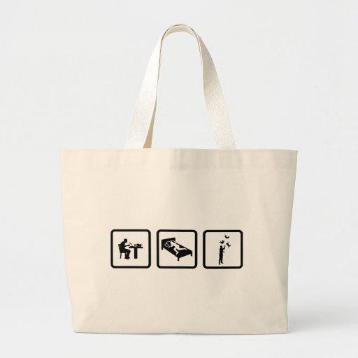 Cat Juggling Bag