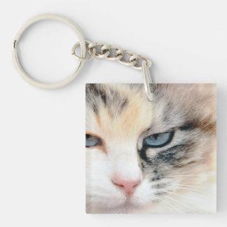 Cat Acrylic Key Chain