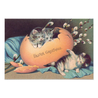 Cat Kitten Easter Colored Egg Cotton Photographic Print